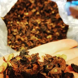 Cascara - Coffee Skin Tea